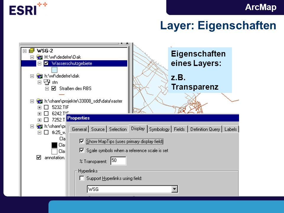 ArcMap Layer: Eigenschaften Eigenschaften eines Layers: z.B. Transparenz