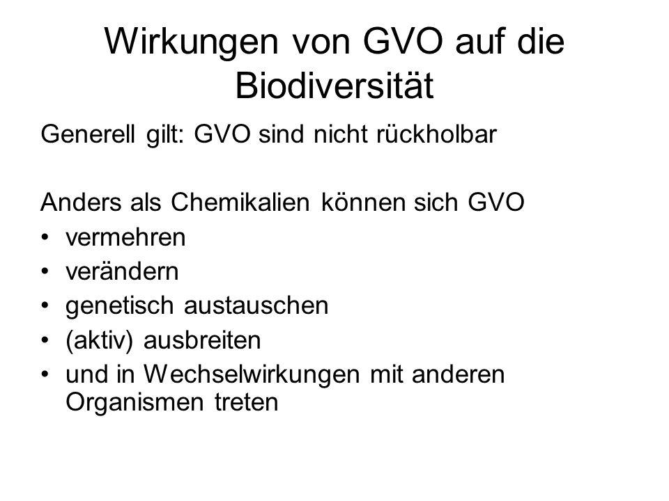 Wirkungen von GVO auf die Biodiversität Generell gilt: GVO sind nicht rückholbar Anders als Chemikalien können sich GVO vermehren verändern genetisch