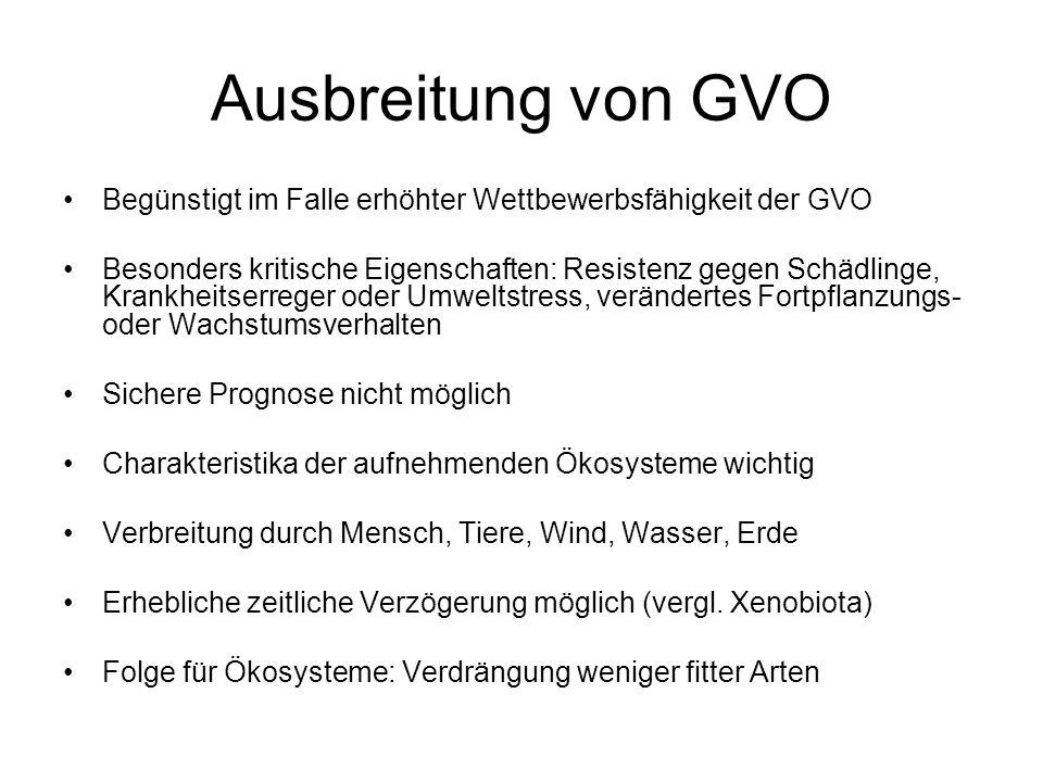 Ausbreitung von GVO Begünstigt im Falle erhöhter Wettbewerbsfähigkeit der GVO Besonders kritische Eigenschaften: Resistenz gegen Schädlinge, Krankheit