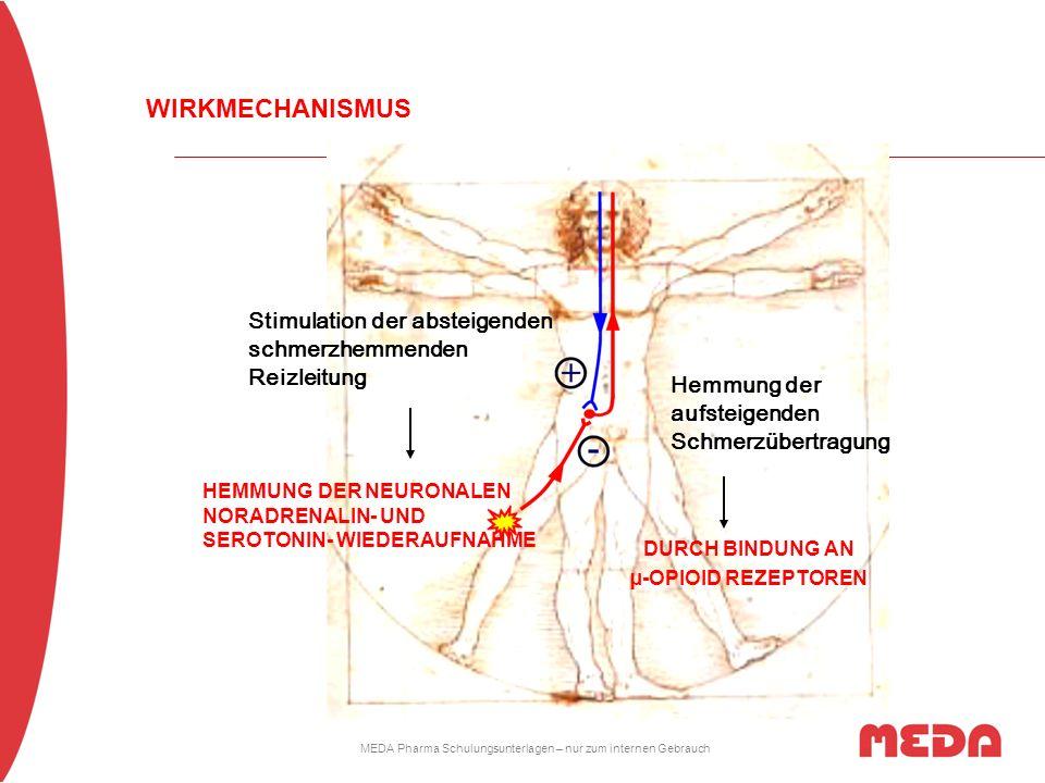MEDA Pharma Schulungsunterlagen – nur zum internen Gebrauch Hemmung der aufsteigenden Schmerzübertragung Stimulation der absteigenden schmerzhemmenden