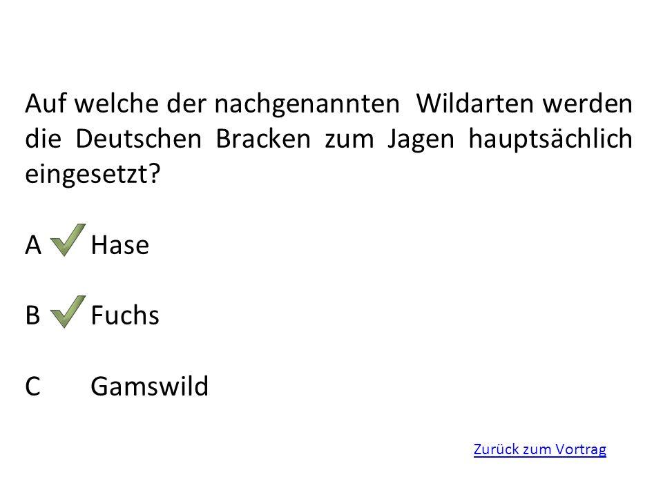 Zurück zum Vortrag Auf welche der nachgenannten Wildarten werden die Deutschen Bracken zum Jagen hauptsächlich eingesetzt? AHase BFuchs CGamswild