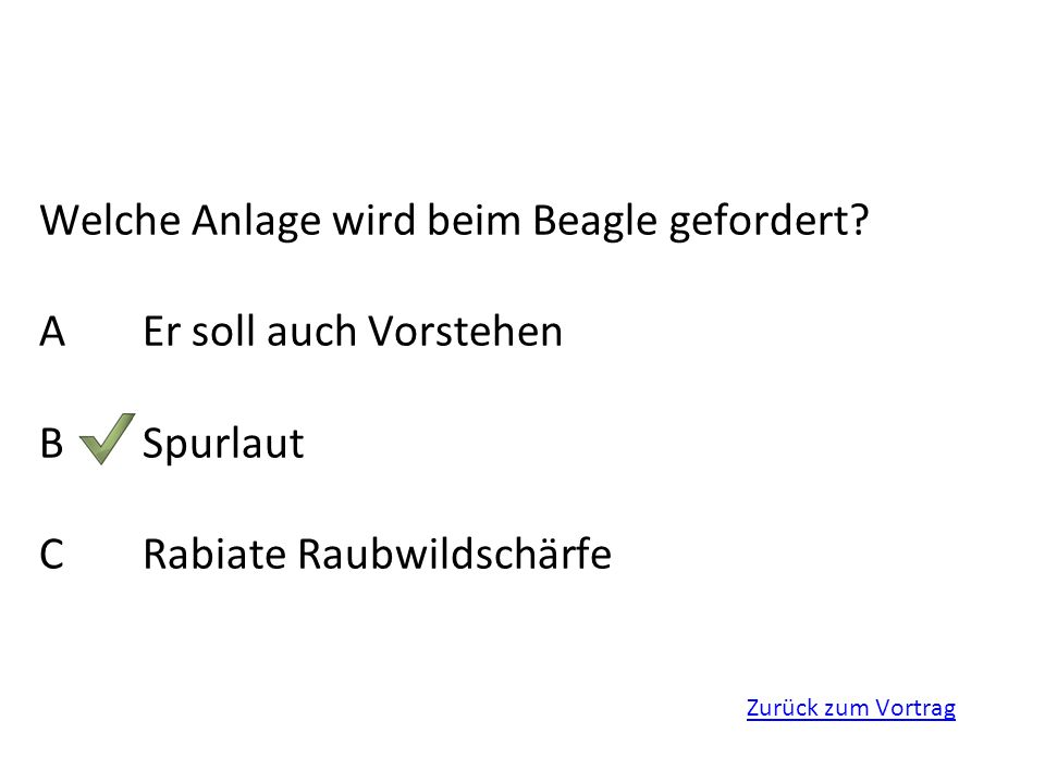 Zurück zum Vortrag Welche Anlage wird beim Beagle gefordert? AEr soll auch Vorstehen BSpurlaut CRabiate Raubwildschärfe