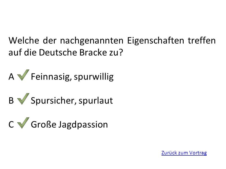 Zurück zum Vortrag Welche der nachgenannten Eigenschaften treffen auf die Deutsche Bracke zu? AFeinnasig, spurwillig BSpursicher, spurlaut CGroße Jagd