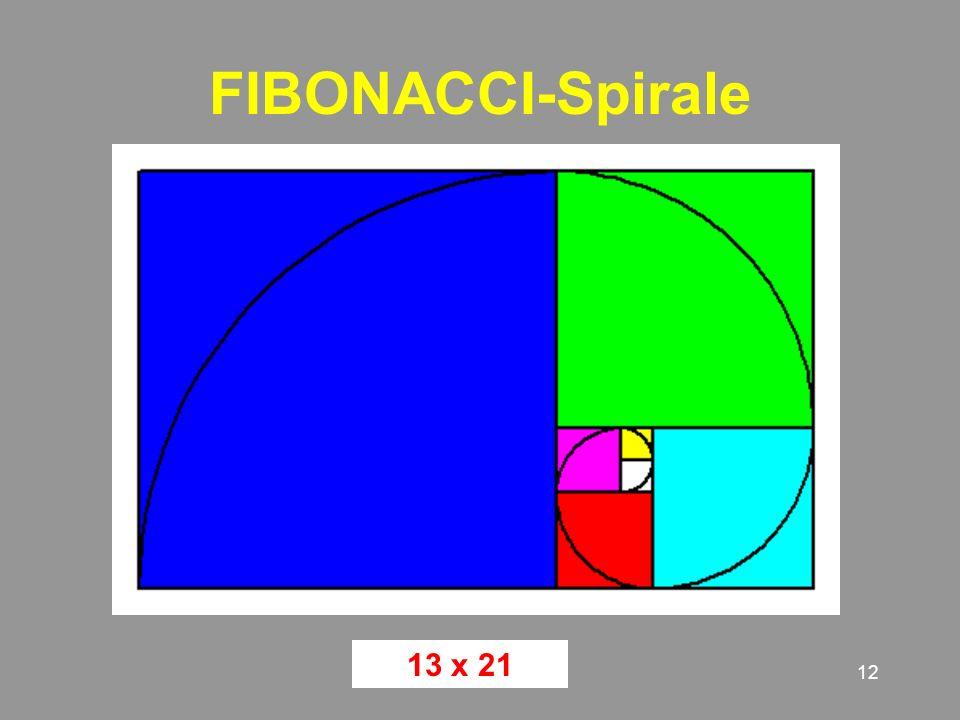 12 FIBONACCI-Spirale 13 x 21