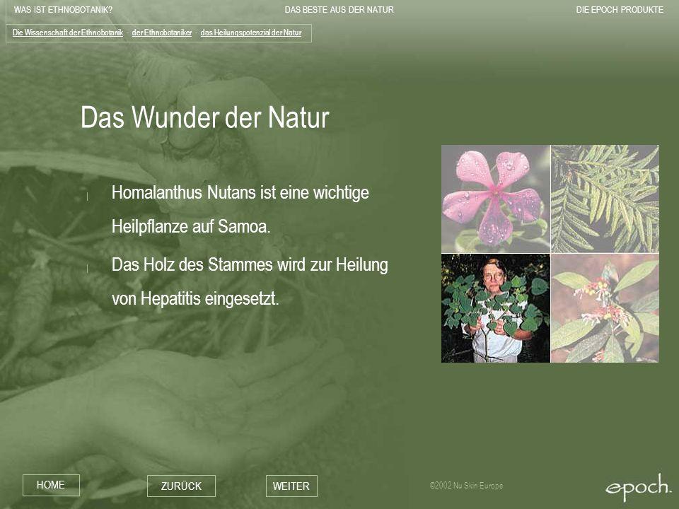WAS IST ETHNOBOTANIK?DAS BESTE AUS DER NATURDIE EPOCH PRODUKTE HOME ZURÜCKWEITER ©2002 Nu Skin Europe Das Wunder der Natur | Homalanthus Nutans ist ei