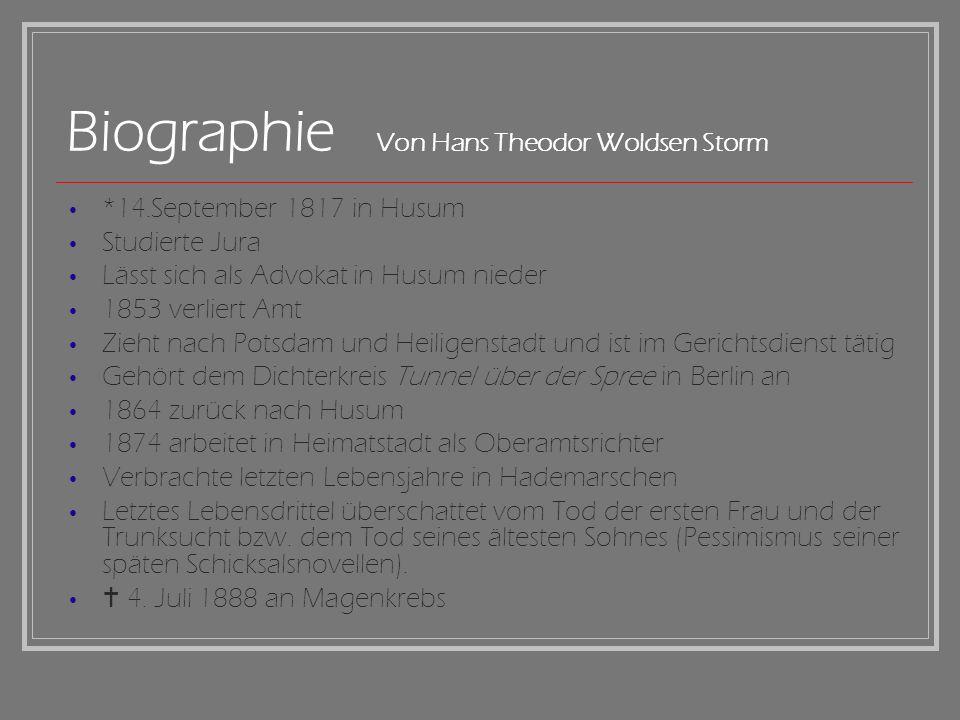 Biographie Von Hans Theodor Woldsen Storm *14.September 1817 in Husum Studierte Jura Lässt sich als Advokat in Husum nieder 1853 verliert Amt Zieht na
