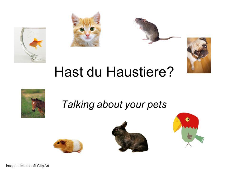 Hast du Haustiere? Talking about your pets Images: Microsoft Clip Art