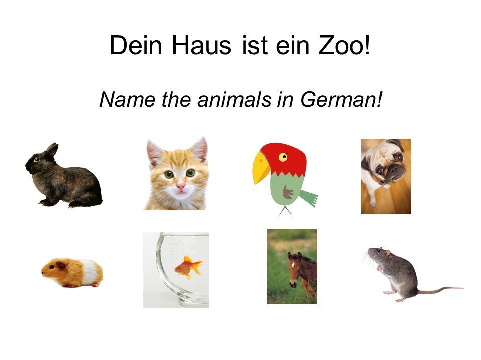 Dein Haus ist ein Zoo! Name the animals in German!