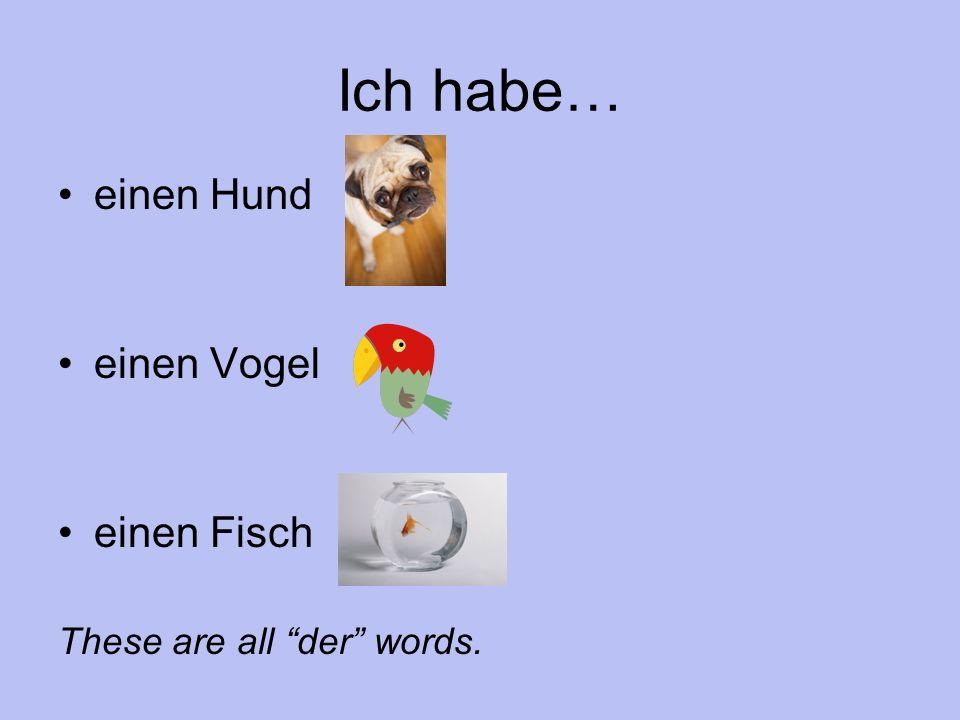 Ich habe… einen Hund einen Vogel einen Fisch These are all der words.