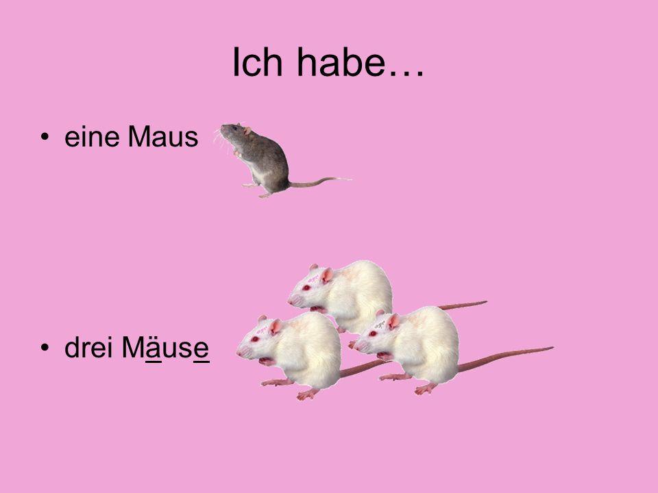 Ich habe… eine Maus drei Mäuse
