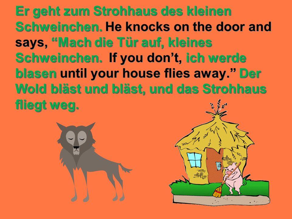 Er geht zum Strohhaus des kleinen Schweinchen. Mach die Tür auf, kleines Schweinchen.ich werde blasenDer Wold bläst und bläst, und das Strohhaus flieg