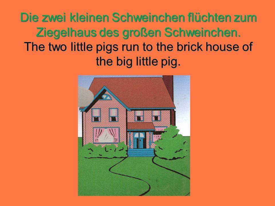 Die zwei kleinen Schweinchen flüchten zum Ziegelhaus des großen Schweinchen. Die zwei kleinen Schweinchen flüchten zum Ziegelhaus des großen Schweinch
