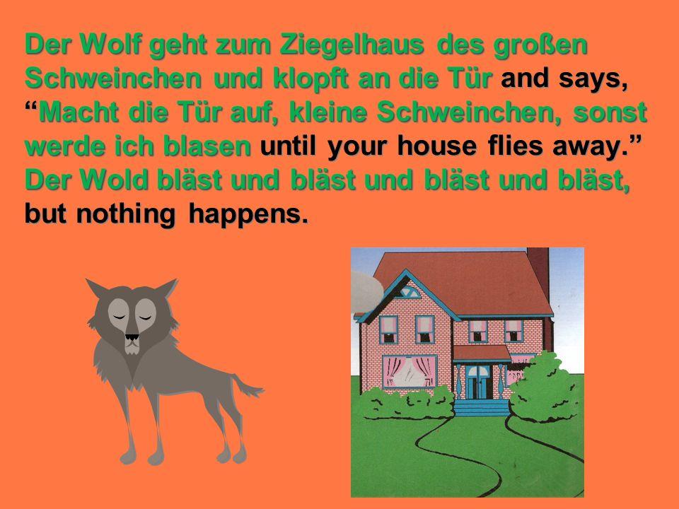 Der Wolf geht zum Ziegelhaus des großen Schweinchen und klopft an die Tür Macht die Tür auf, kleine Schweinchen, sonst werde ich blasen Der Wold bläst