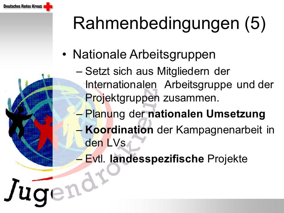 Rahmenbedingungen (5) Nationale Arbeitsgruppen –Setzt sich aus Mitgliedern der Internationalen Arbeitsgruppe und der Projektgruppen zusammen.