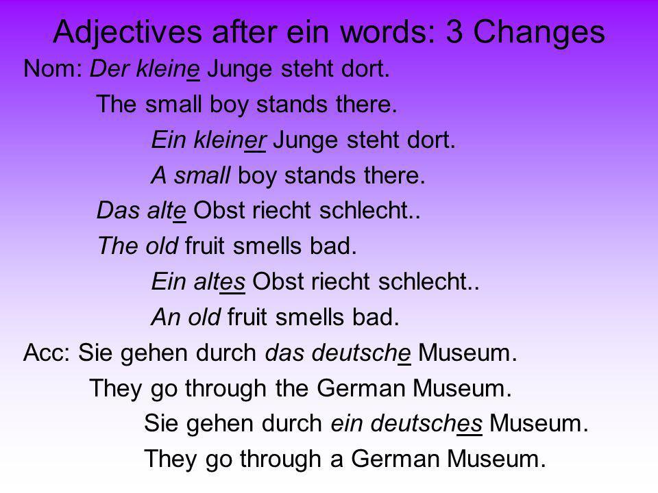 Adjectives after ein words: 3 Changes Nom: Der kleine Junge steht dort. The small boy stands there. Das alte Obst riecht schlecht.. The old fruit smel