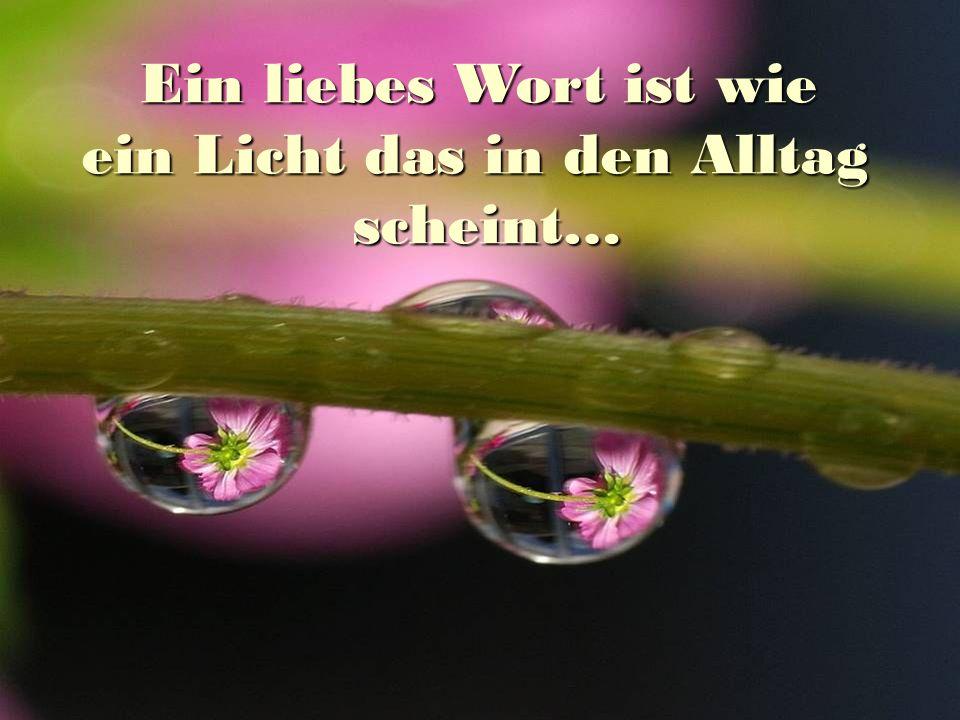 Ein liebes Wort ist wie Ein liebes Wort ist wie ein Licht das in den Alltag scheint… scheint…