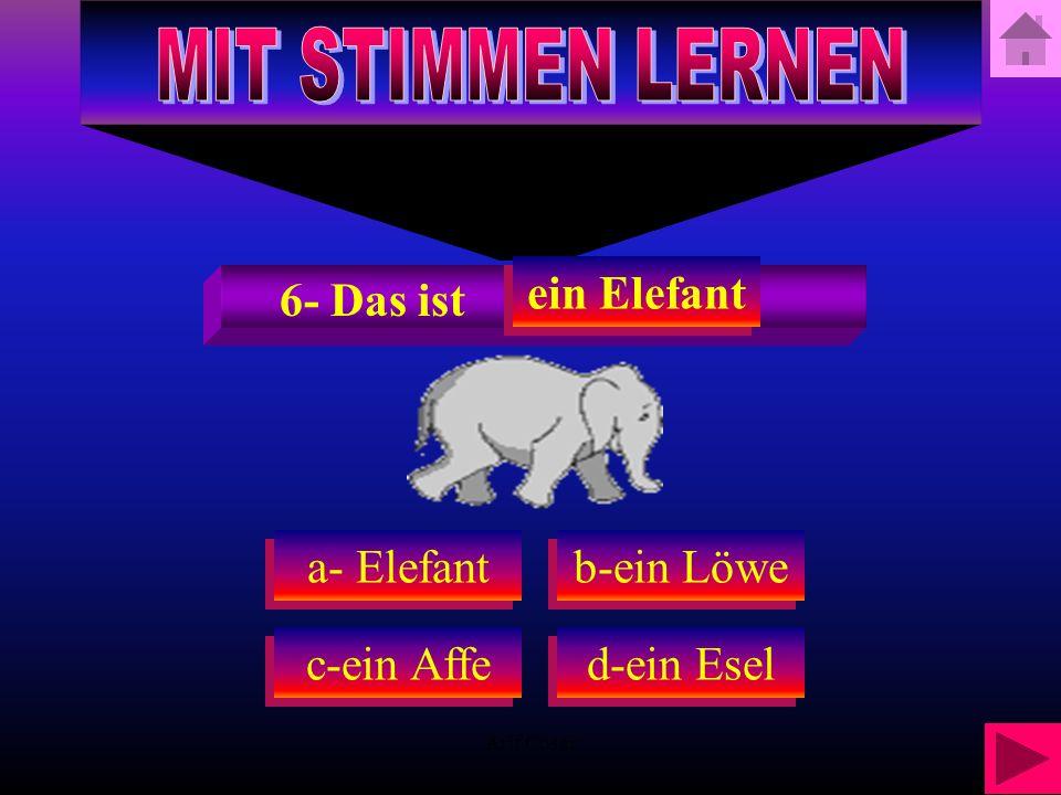 Arif Cosar a-ein Elefant c-ein Affe d-ein Esel b-ein Löwe 6-Welches Tier ist das?