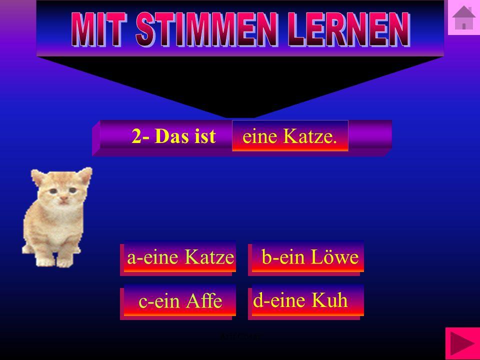 Arif Cosar a-eine Katze c-ein Affe b-ein Löwe b-ein Löwe 2- Das ist d-eine Kuh eine Katze.