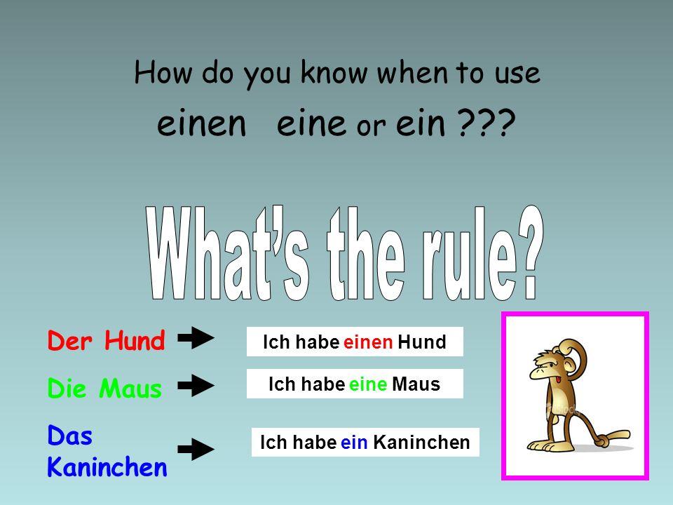 How do you know when to use einen eine or ein ??? Der Hund Die Maus Das Kaninchen Ich habe einen Hund Ich habe eine Maus Ich habe ein Kaninchen