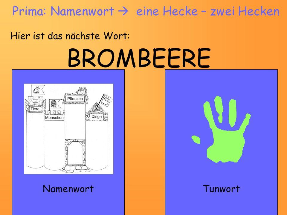 BROMBEERE NamenwortTunwort Prima: Namenwort eine Hecke – zwei Hecken Hier ist das nächste Wort: