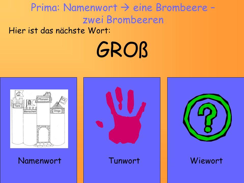 GROß NamenwortWiewort Prima: Namenwort eine Brombeere – zwei Brombeeren Hier ist das nächste Wort: Tunwort