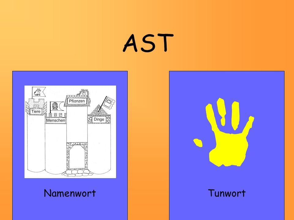 AST NamenwortTunwort