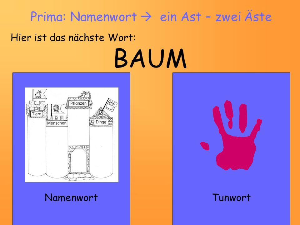 BAUM NamenwortTunwort Prima: Namenwort ein Ast – zwei Äste Hier ist das nächste Wort: