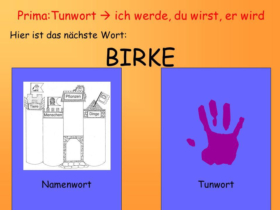 GARTEN NamenwortTunwort Prima: Namenwort eine Birke – zwei Birken Hier ist das nächste Wort:
