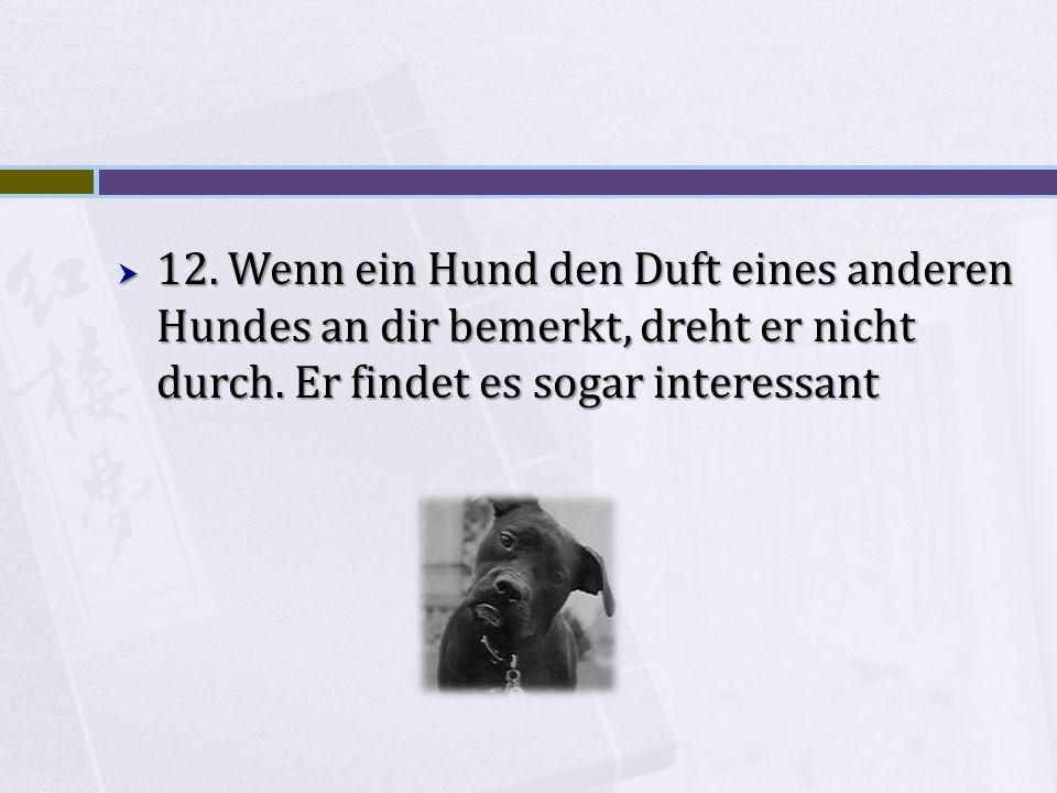 12. Wenn ein Hund den Duft eines anderen Hundes an dir bemerkt, dreht er nicht durch.