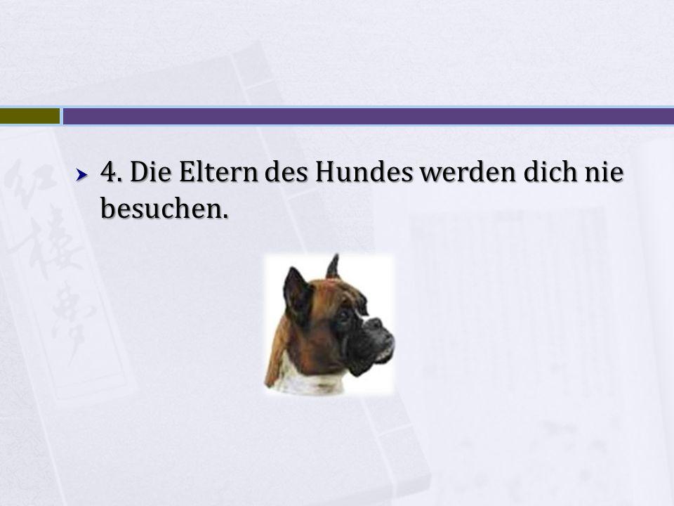 4. Die Eltern des Hundes werden dich nie besuchen.