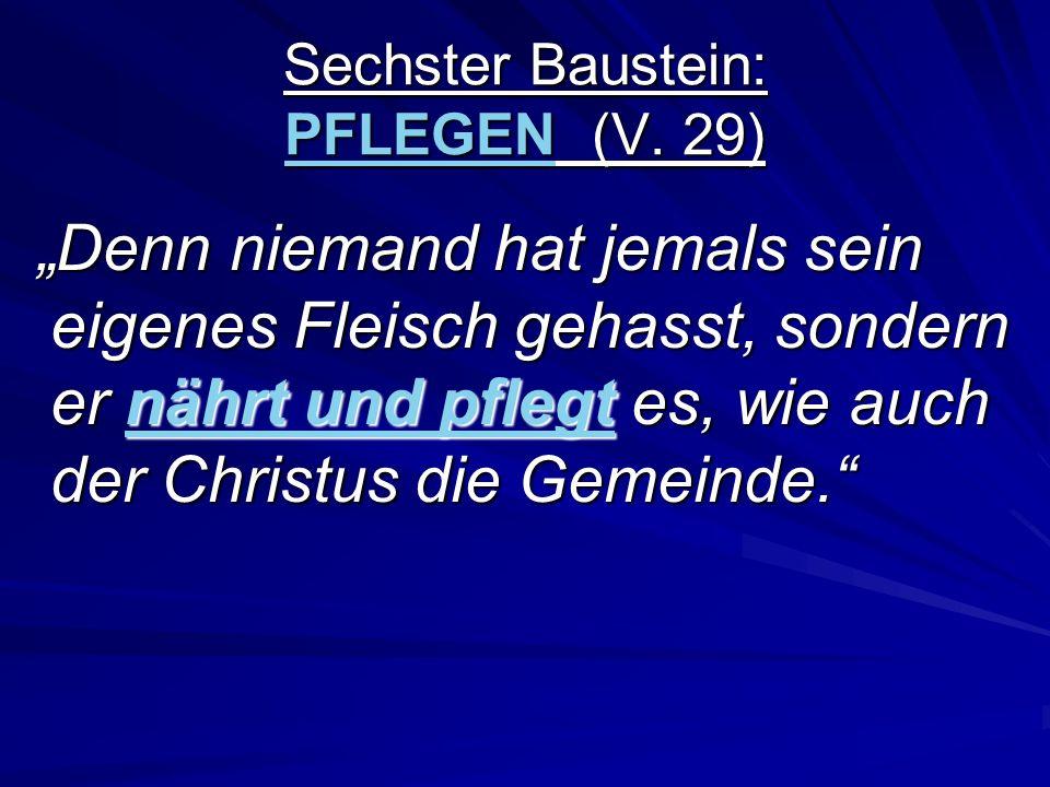 Sechster Baustein: PFLEGEN (V. 29) Denn niemand hat jemals sein eigenes Fleisch gehasst, sondern er nährt und pflegt es, wie auch der Christus die Gem