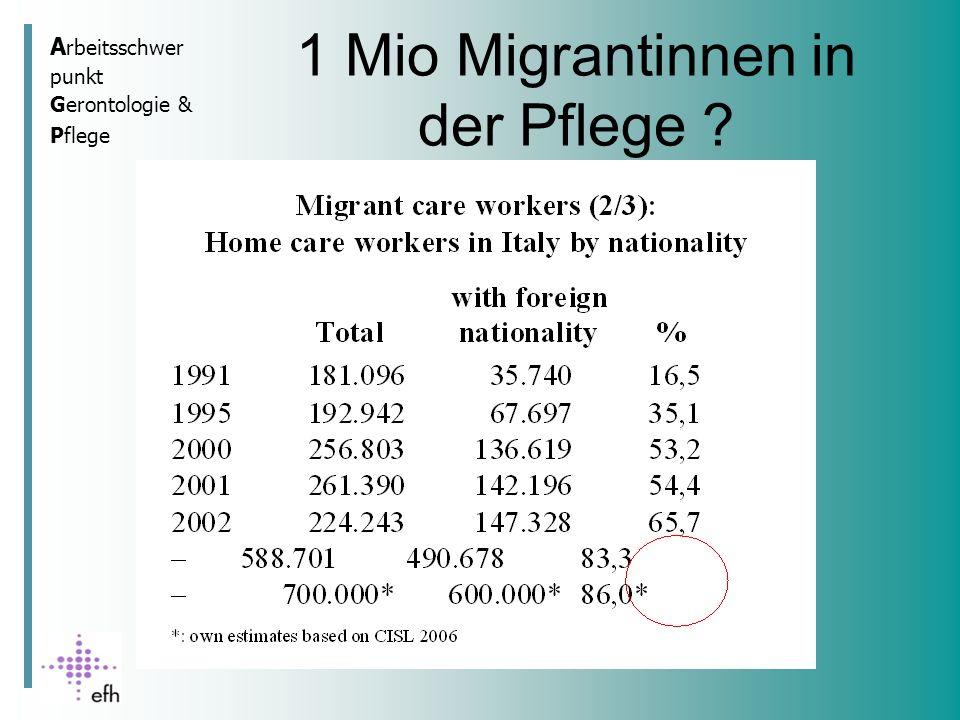 A rbeitsschwer punkt Gerontologie & Pflege 1 Mio Migrantinnen in der Pflege ?
