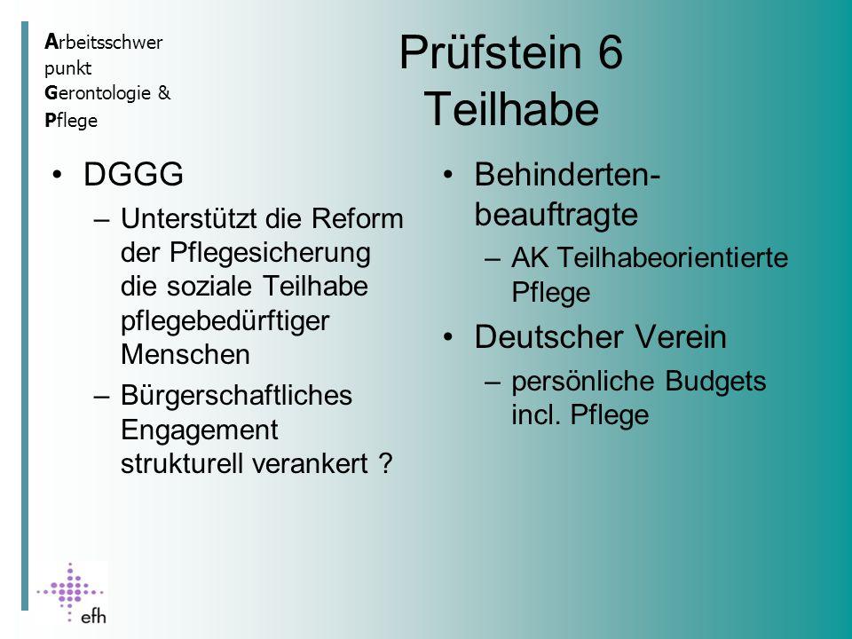 A rbeitsschwer punkt Gerontologie & Pflege Prüfstein 6 Teilhabe DGGG –Unterstützt die Reform der Pflegesicherung die soziale Teilhabe pflegebedürftiger Menschen –Bürgerschaftliches Engagement strukturell verankert .