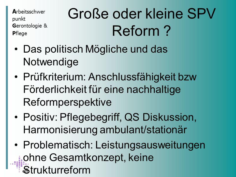 A rbeitsschwer punkt Gerontologie & Pflege Große oder kleine SPV Reform .