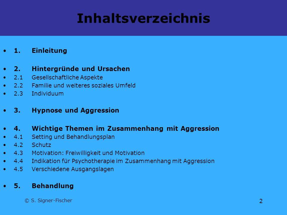 © S. Signer-Fischer 2 Inhaltsverzeichnis 1.Einleitung 2.Hintergründe und Ursachen 2.1Gesellschaftliche Aspekte 2.2Familie und weiteres soziales Umfeld
