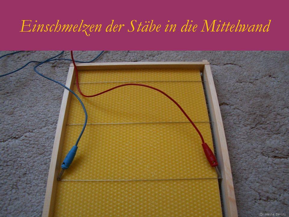 Einschmelzen der Stäbe in die Mittelwand (Dr. Heine, Berlin)