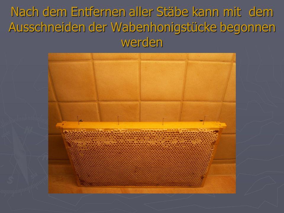 Vorgehensweise für das Herausziehen des Stabes (Dr. Heine, Berlin)