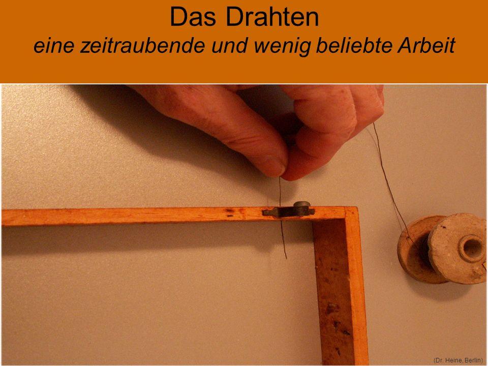 Abgewinkelter Stab aus lebensmittelechtem Edelstahl 1 mm (Dr. Heine, Berlin) 5 Cent / Stück