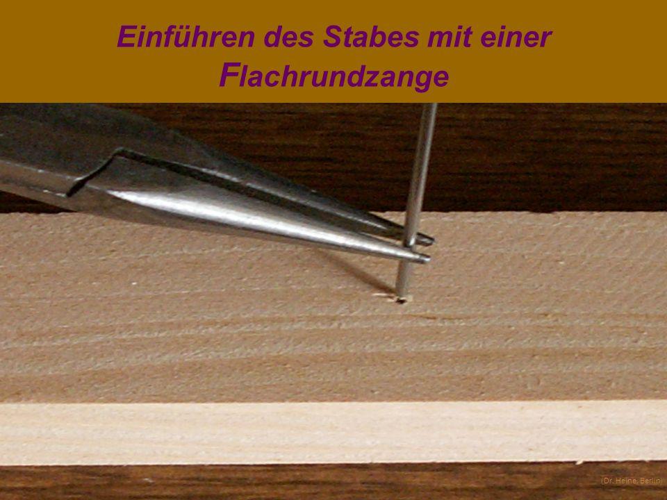 Einführen des Stabes mit einer F lachrundzange (Dr. Heine, Berlin)
