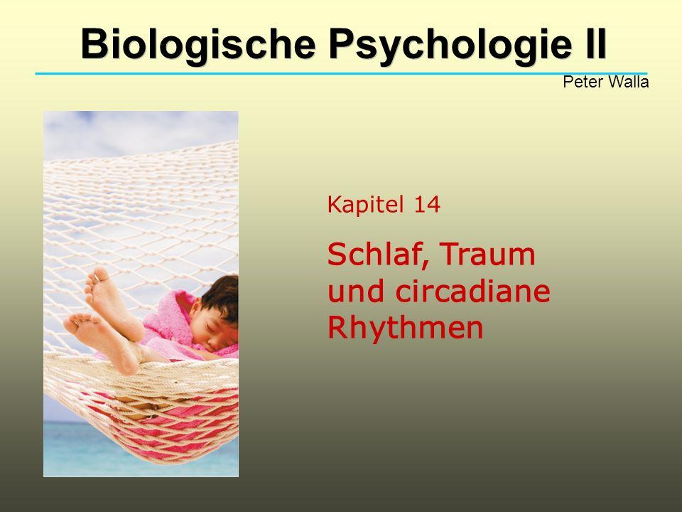 Kapitel 14 Schlaf, Traum und circadiane Rhythmen Biologische Psychologie II Peter Walla