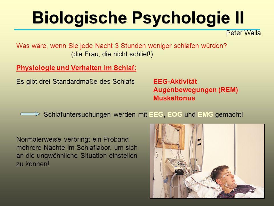 Biologische Psychologie II Peter Walla Was wäre, wenn Sie jede Nacht 3 Stunden weniger schlafen würden? (die Frau, die nicht schlief!) Physiologie und