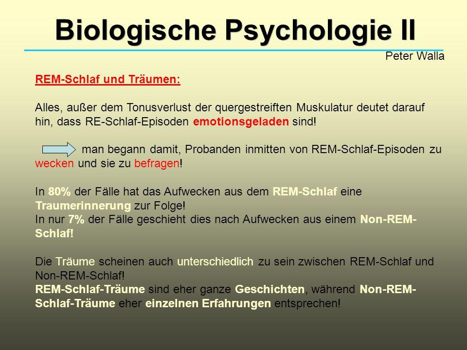 Biologische Psychologie II Peter Walla REM-Schlaf und Träumen: Alles, außer dem Tonusverlust der quergestreiften Muskulatur deutet darauf hin, dass RE