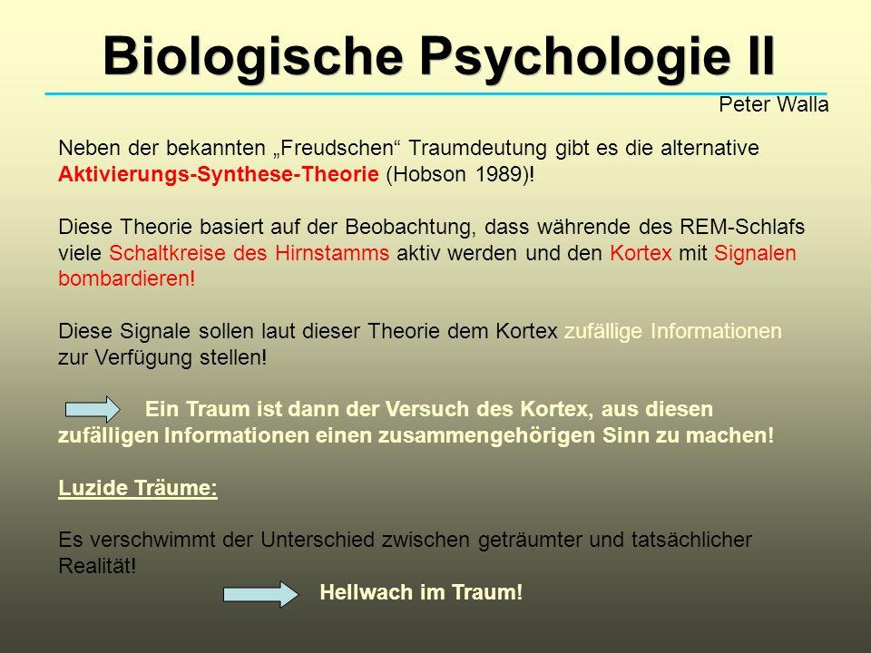 Biologische Psychologie II Peter Walla Neben der bekannten Freudschen Traumdeutung gibt es die alternative Aktivierungs-Synthese-Theorie (Hobson 1989)