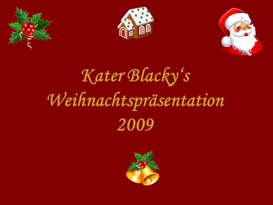 Kater Blackys Weihnachtspräsentation 2009
