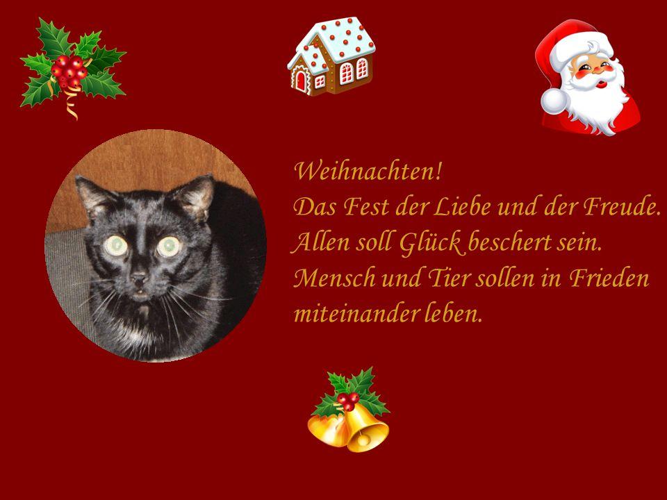 Weihnachten! Das Fest der Liebe und der Freude. Allen soll Glück beschert sein. Mensch und Tier sollen in Frieden miteinander leben.