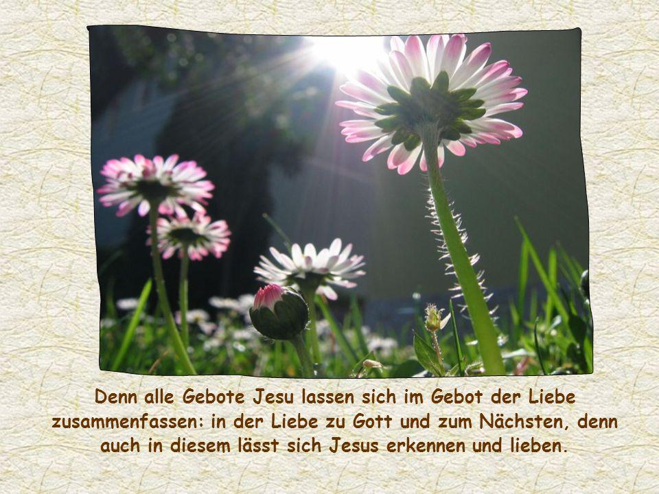 Voraussetzung für eine solche Offenbarung Jesu aber ist die Liebe zu ihm. Die Dynamik und die Kraft dieser Liebe kennzeichnen die Christen. Ihnen fehl