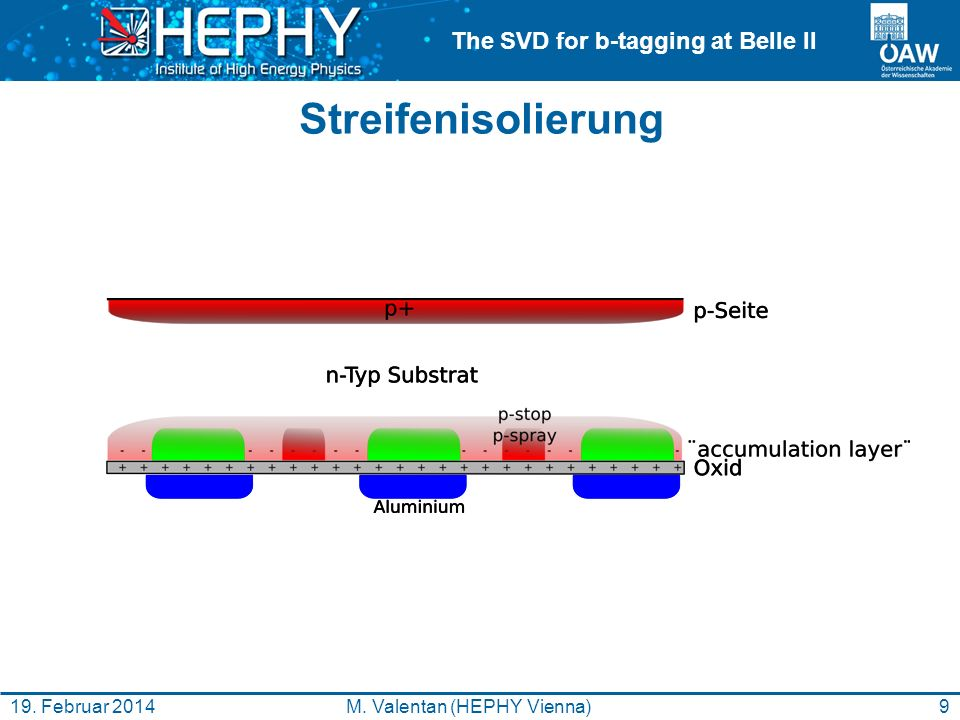 The SVD for b-tagging at Belle II Testbeam und Bestrahlung 20M.