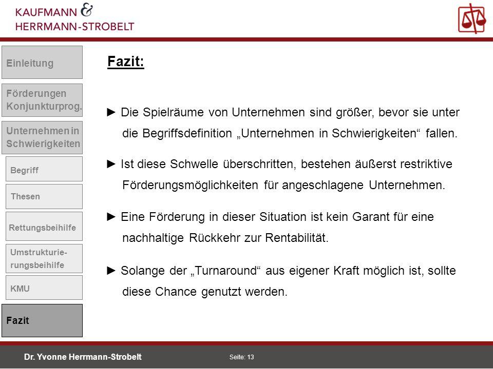 Dr. Yvonne Herrmann-Strobelt SS08 Seite: 13 Einleitung Förderungen Konjunkturprog. Unternehmen in Schwierigkeiten Begriff Thesen Rettungsbeihilfe Umst