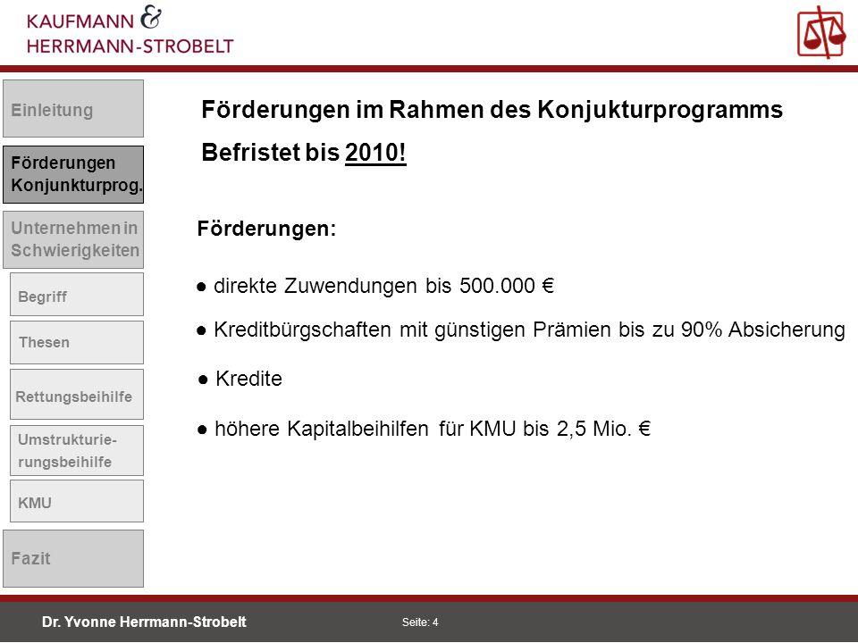Dr.Yvonne Herrmann-Strobelt SS08 Seite: 15 Einleitung Förderungen Konjunkturprog.