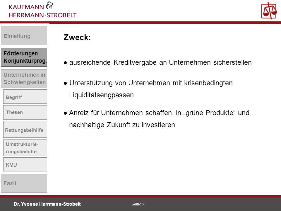 Dr.Yvonne Herrmann-Strobelt SS08 Seite: 6 Einleitung Förderungen Konjunkturprog.